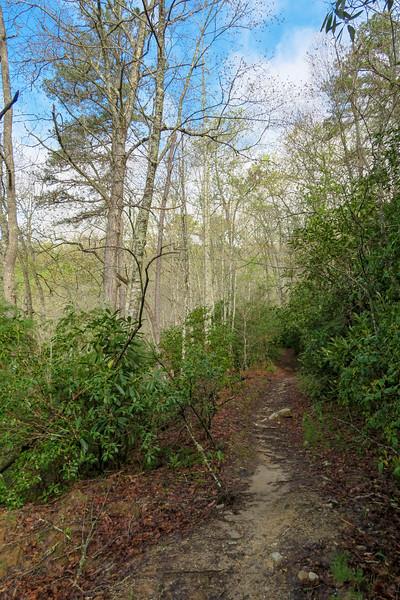 Mullinax Trail -- 2,610'
