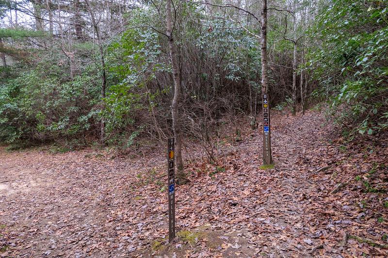 Mullinax/Squirrel Gap Trail Junction -- 2,860'