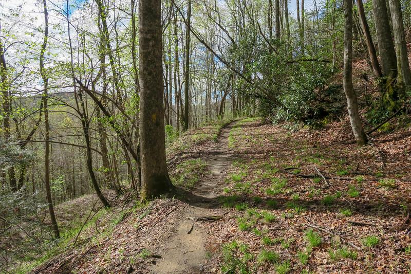 Mullinax Trail -- 2,640'