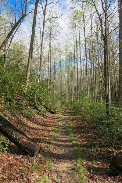 Mullinax Trail -- 2,830'