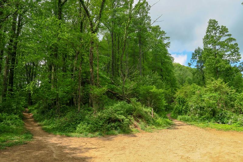 North Boundary Road @ Ingles Field Gap -- 2,940'
