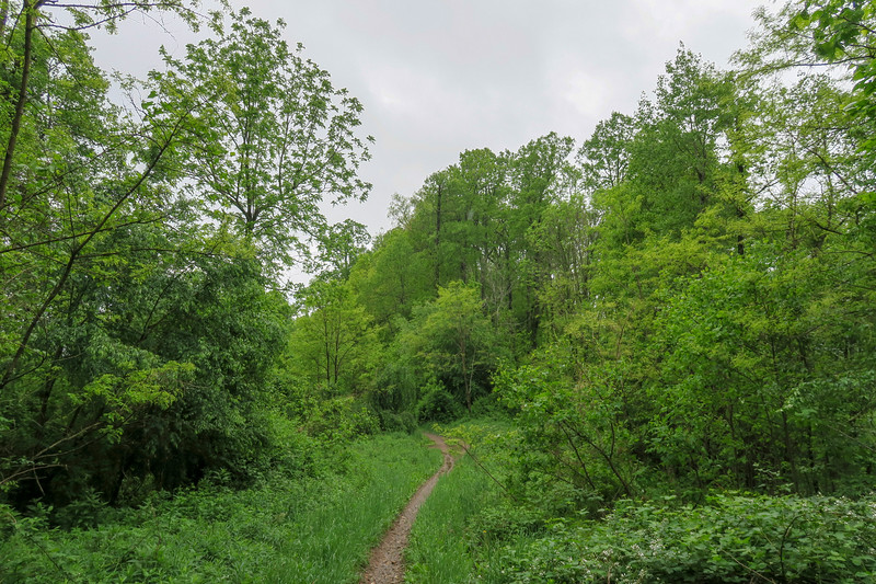North Boundary Road -- 3,040'