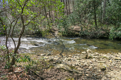 North Mills River Trail (Ford #5) -- 2,320'