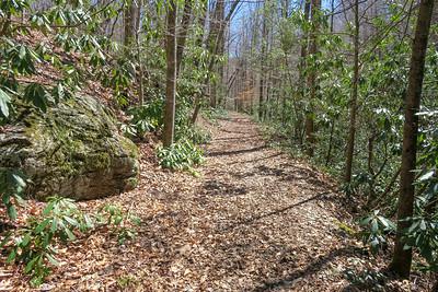North Mills River Trail -- 2,360'