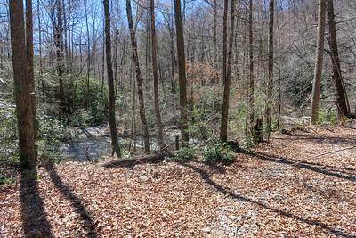 North Mills River Trail -- 2,340'