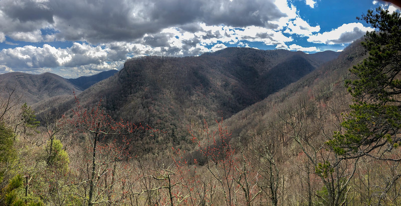 Old Butt Knob Trail (Lower Ledge Overlook) -- 4,380'