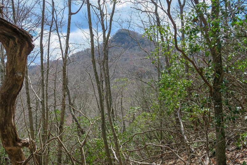 Old Butt Knob Trail -- 3,900'