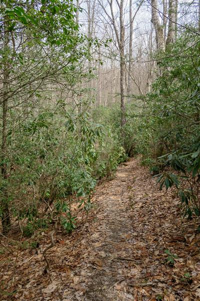 Pilot Cove Loop Trail -- 3,250'