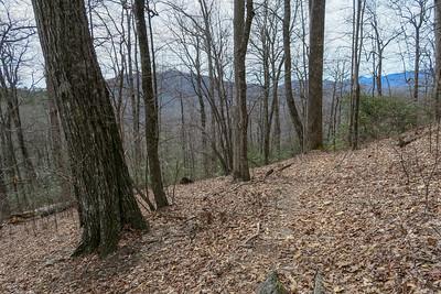 Pilot Cove Loop Trail -- 3,720'