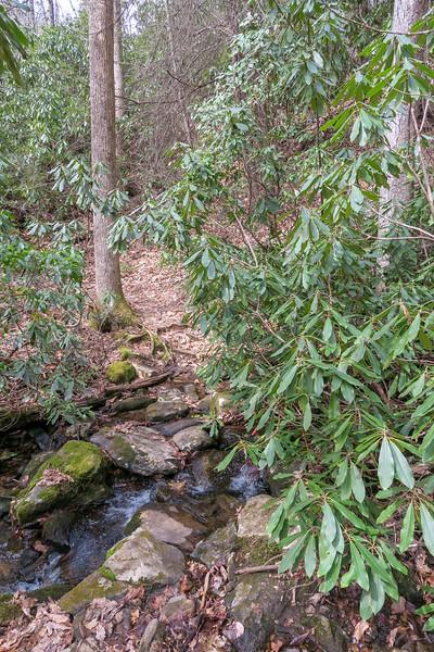 Pilot Cove-Slate Rock Trail -- 3,240'