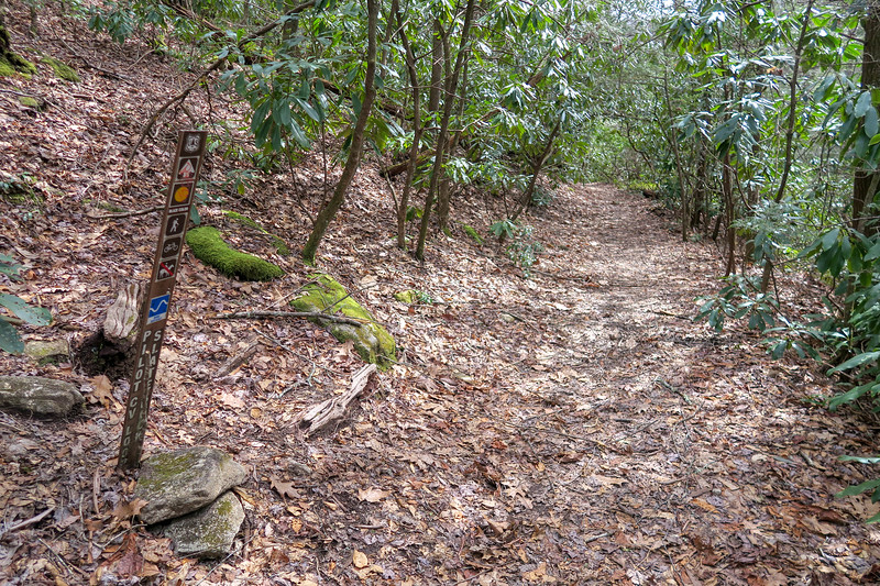 Pilot Cove-Slate Rock/Pilot Cove Loop Trail Lower Junction -- 3,150'
