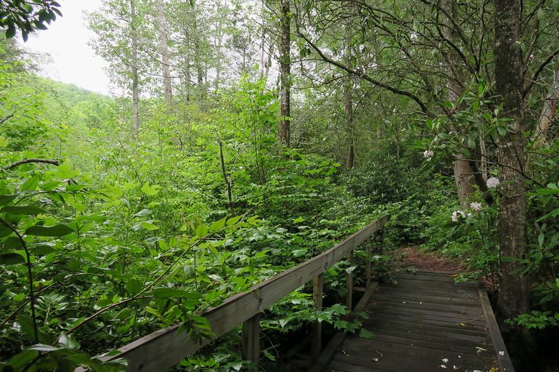 Pilot Cove-Slate Rock Trail -- 3,320'