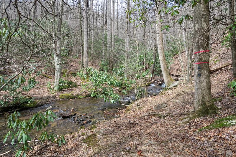 Pilot Cove-Slate Rock Trail/Laurel Mountain Connector Path Junction -- 3,580'