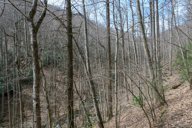 Pilot Cove-Slate Rock Trail -- 3,300'