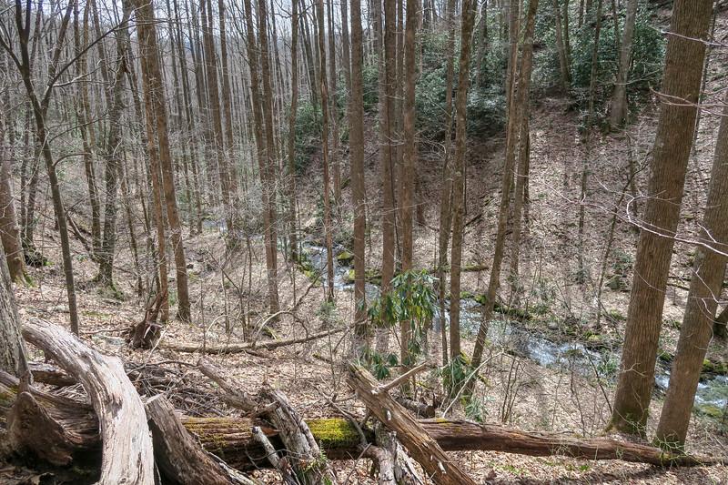 Pilot Cove-Slate Rock Trail -- 3,330'