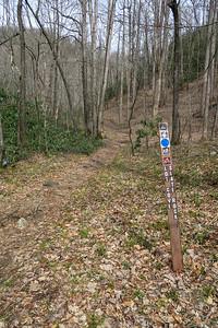 Pilot Cove-Slate Rock East Trailhead (Yellow Gap Road) -- 2,800'