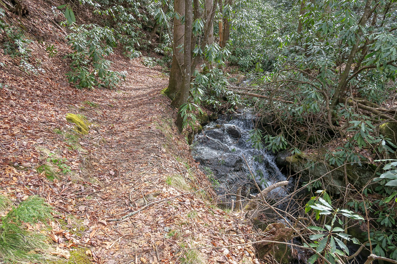 Pilot Cove-Slate Rock Trail -- 2,950'