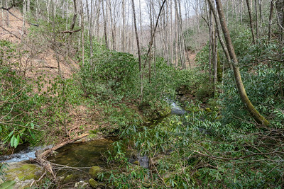 Pilot Cove-Slate Rock Trail -- 2,850'
