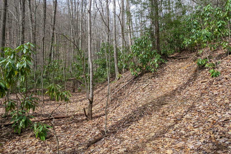 Pilot Cove-Slate Rock Trail -- 3,270'