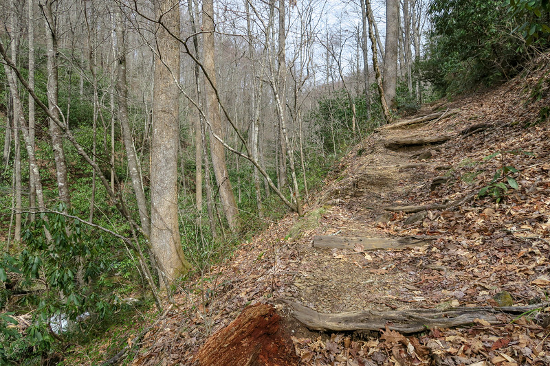 Pilot Cove-Slate Rock Trail -- 2,880'