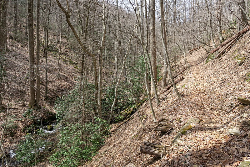Pilot Cove-Slate Rock Trail -- 3,460'