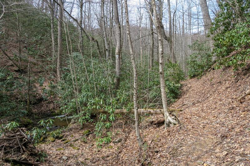 Pilot Cove-Slate Rock Trail -- 3,520'