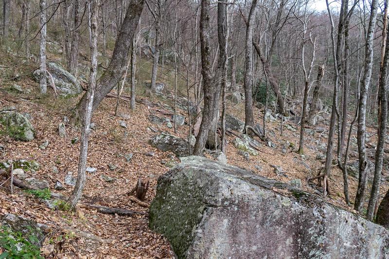 Pilot Rock Extension Trail -- 3,740'