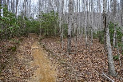 Pilot Rock Trail -- 3,500'