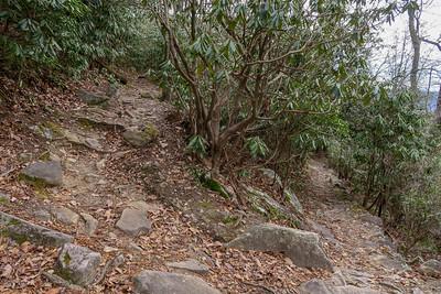 Pilot Rock Trail -- 3,920'