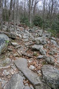 Pilot Rock Trail -- 3,800'