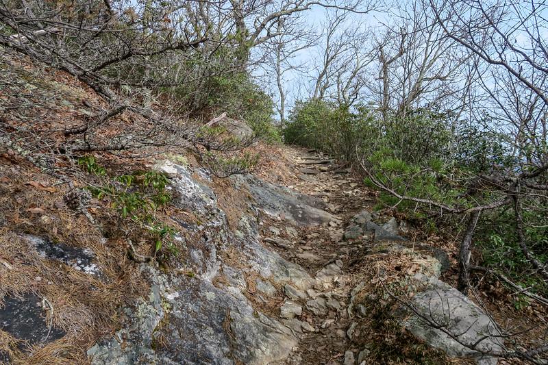 Pilot Rock Trail -- 4,150'