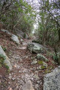 Pilot Rock Trail -- 3,940'