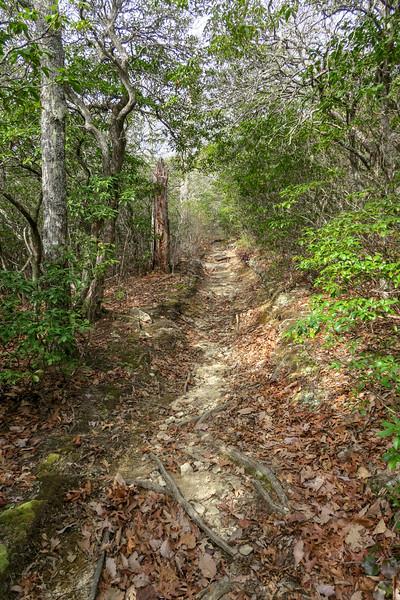 Pilot Rock Trail -- 4,020'