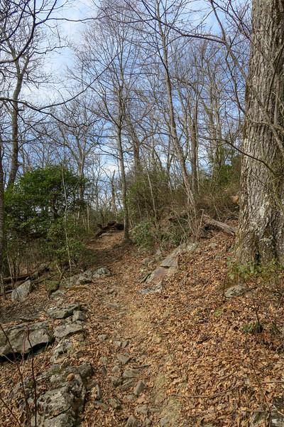 Pilot Rock Trail -- 4,650'