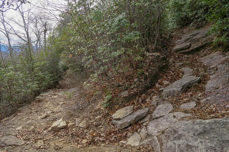Pilot Rock Trail -- 4,100'