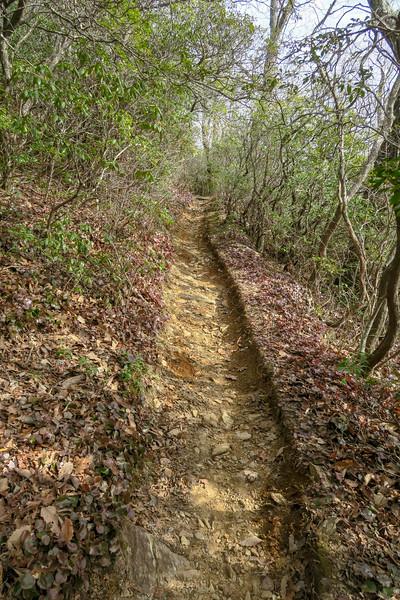 Pilot Rock Trail -- 4,500'