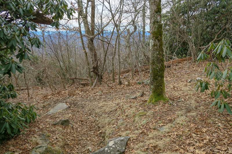 Pilot Rock/Thompson Creek Trail Junction -- 4,980'
