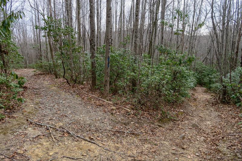 Pilot Rock Trail -- 3,400'
