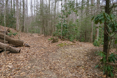 Pilot Rock Trail -- 3,350'