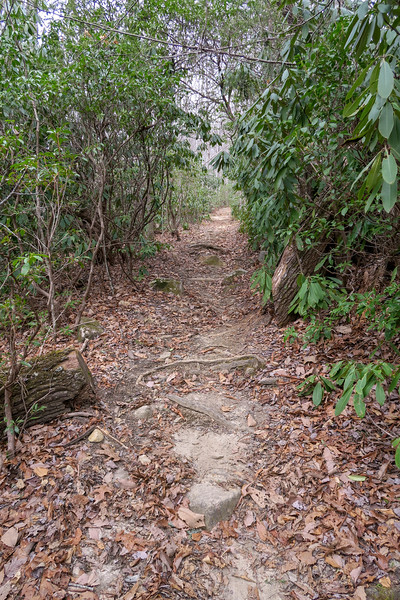 Pilot Rock Trail -- 3,360'