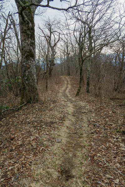 Pilot Rock Trail -- 5,120'