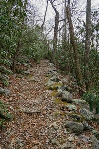 Pilot Rock Trail -- 3,850'
