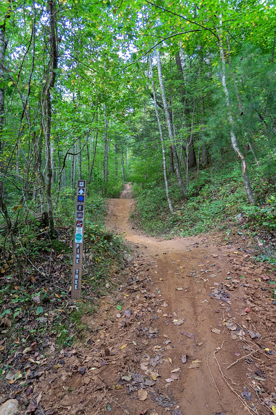 Pine Tree Loop/Deerfield Loop Trailhead (South Trailhead) -- 2,190'