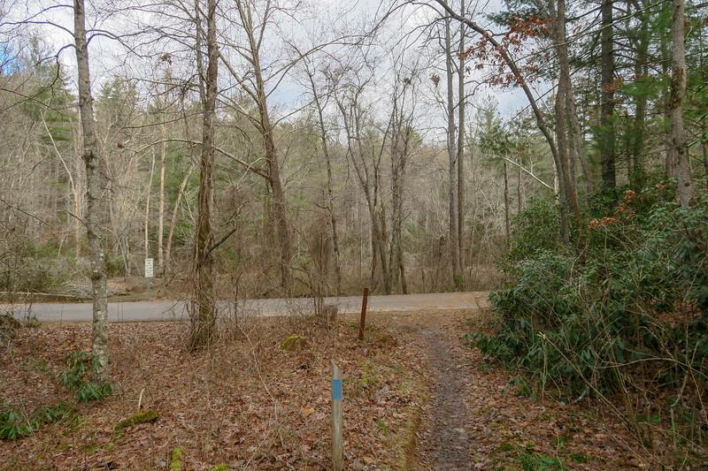 Pine Tree Loop Trail -- 2,150'
