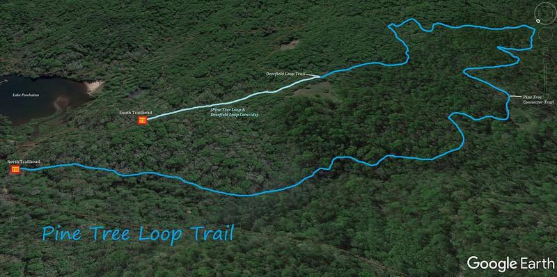 Pine Tree Loop Trail Map