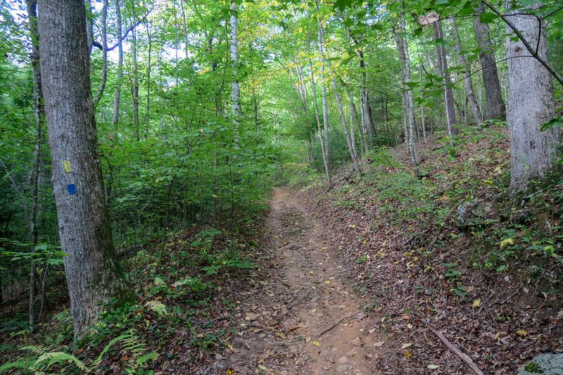 Pine Tree Loop/Deerfield Loop Trail -- 2,220'