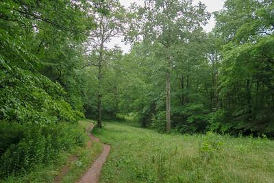 Pink Beds Loop Trail -- 3,280'