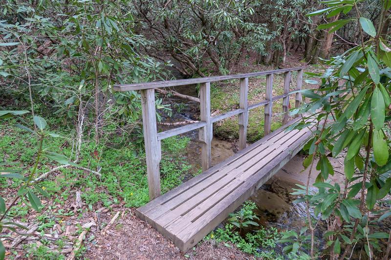 Pink Beds Loop Trail @ Barnett Branch -- 3,210'