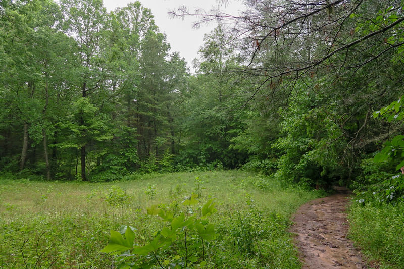 Pink Beds Loop Trail -- 3,260'