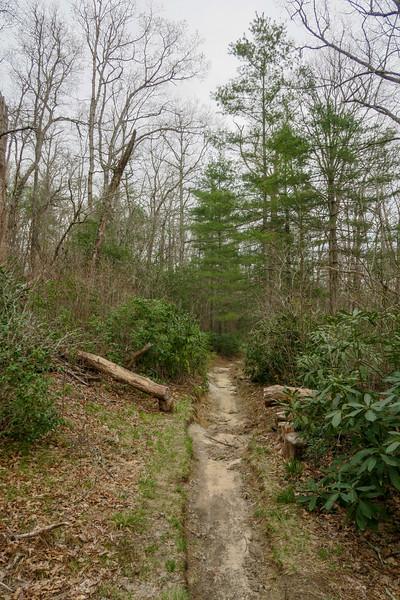 Pink Beds Loop Trail -- 3,300'